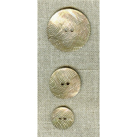 Mother-of-pearl button Mesh, col. Seagull