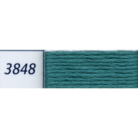 DMC mouliné embroidery thread, col. 3848
