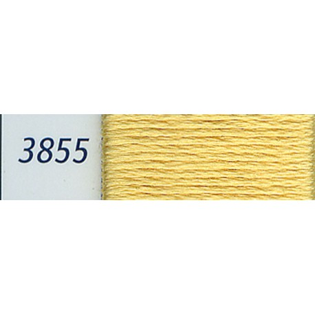 DMC mouliné embroidery thread, col. 3855