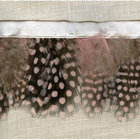 Ruban Bande de Plumes Mouchetées , col. Angel 73